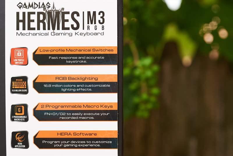 Gambias M3 (3)